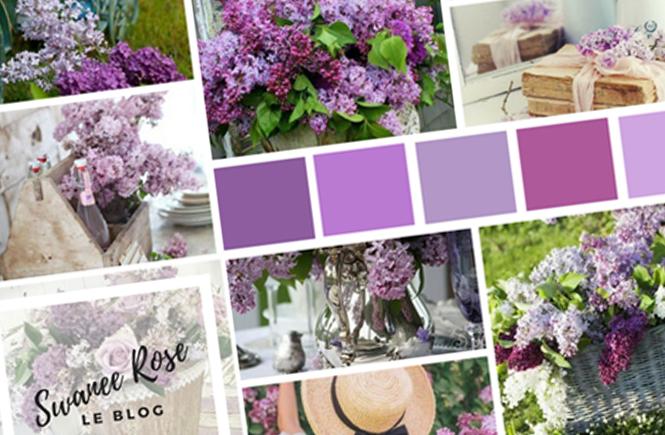Photo d'un collage avec des photos de lilas sur Swanee Rose Le Blog