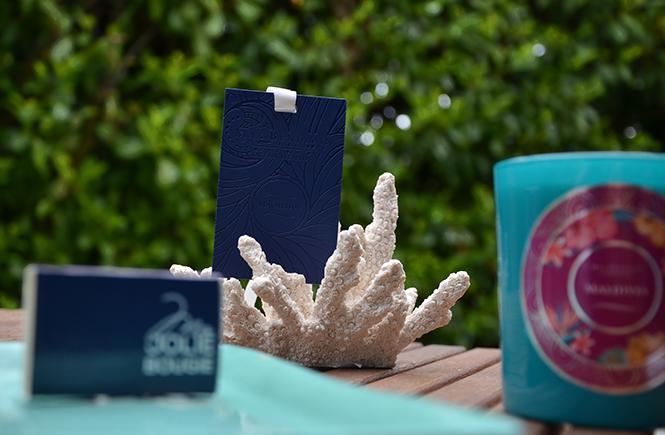 Photo d'une bougie et carte parfumée Max Benjamin sur Swanee Rose Le Blog