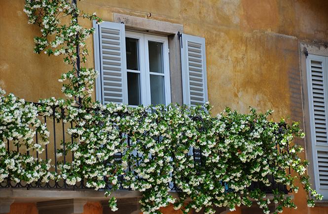 fleurs-au-balcon-à-Bergame-en-Italie