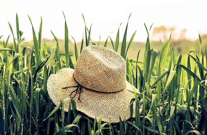 Chapeau de paille dans l'herbe