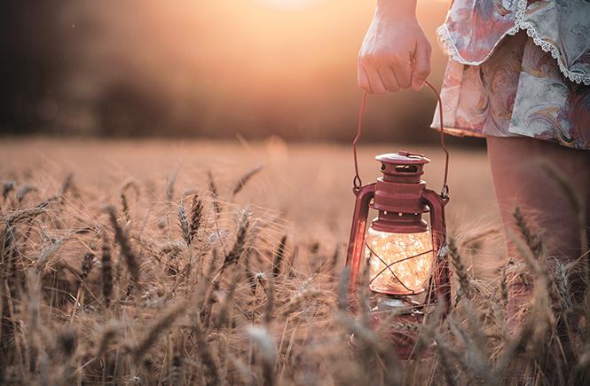 Ballade avec une lanterne dans une champ de blé