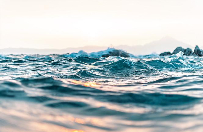 haute-mer-swanee-rose-le-blog