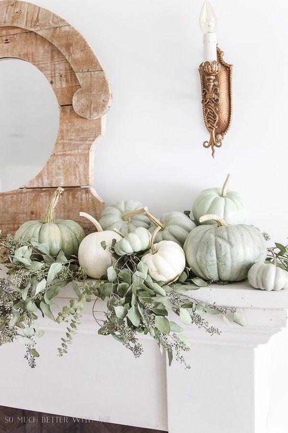 Citrouilles blanc vert pour décorer le salon