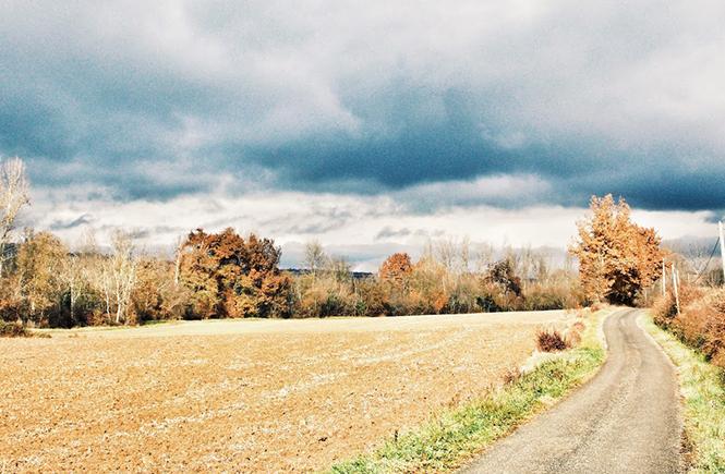 Campagne en automne
