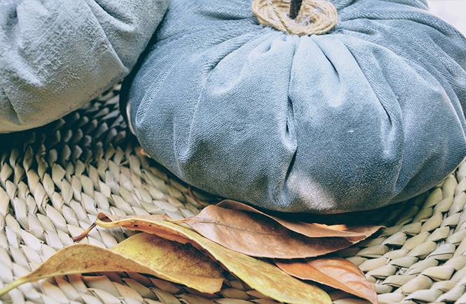 Citrouilles en velours by Swanee Rose Le Blog