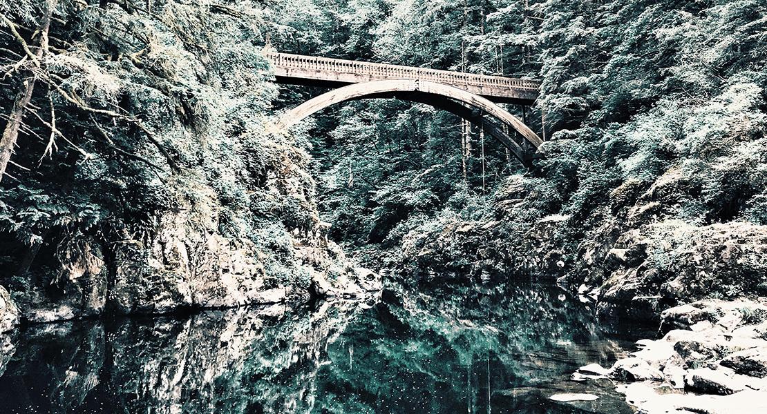 Pont au dessus d'une rivière dans une nature sauvage