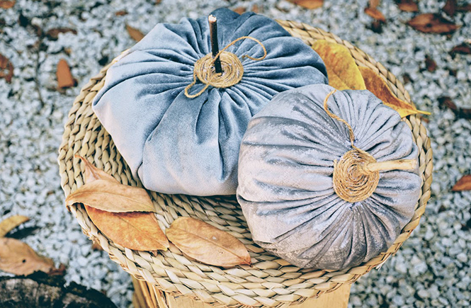 Velvet Fall pumpkins by Swanee Rose Le Blog
