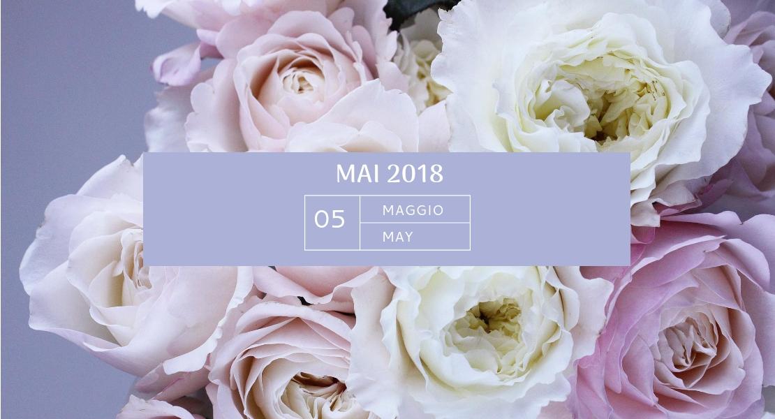 Photo de mon agenda du mois de mai sur Swanee Rose Le Blog