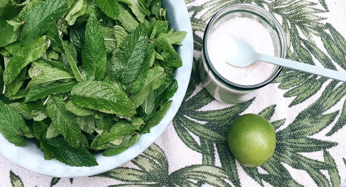 Ingrédients pour un sirop de menthe fraice bio fait maison sur Swanege Rose Le Blo