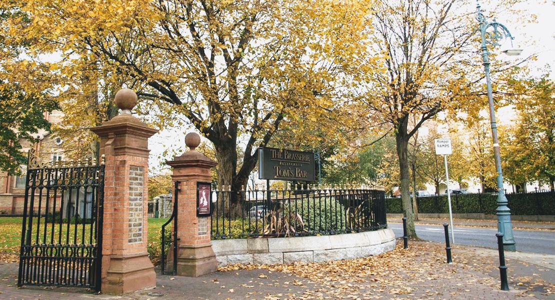 Feuilles d'automne à Dublin