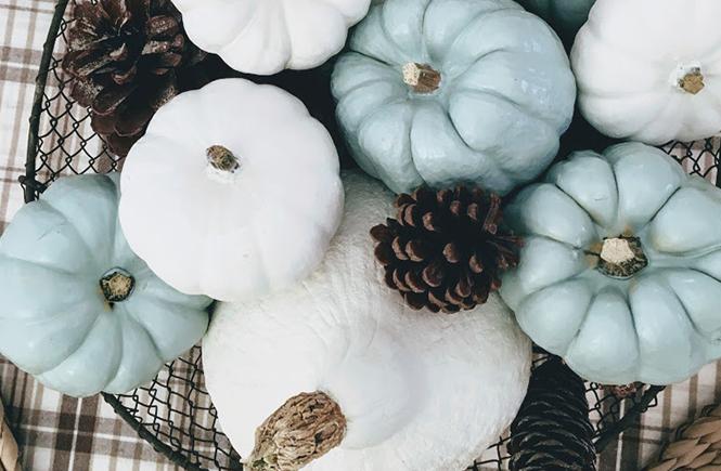 DIY Centre de table d'automne avec mini citrouilles sur Swanee Rose Le Blog