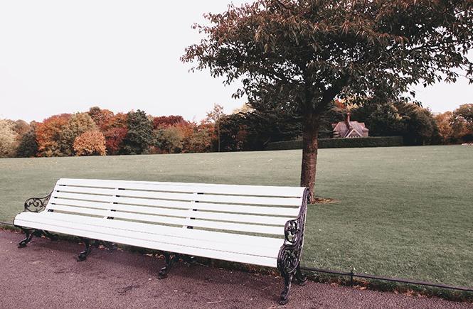 Ballade au parc en automne sur Swanee Rose Le Blog