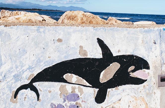 Journée internationale de la mer