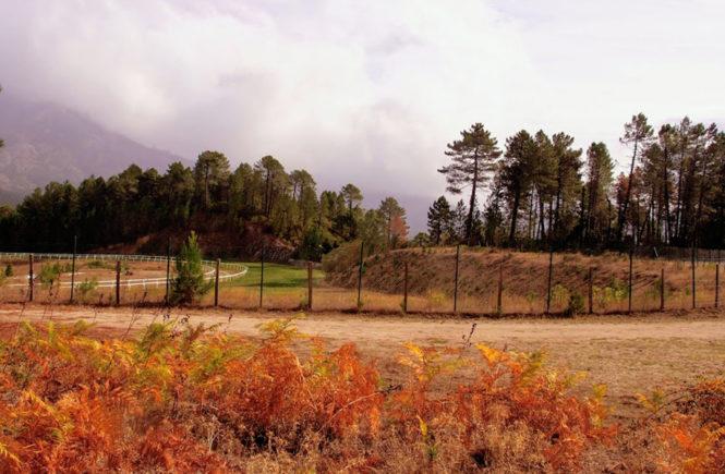 Ballade dans la montagne corse à l'hippodrome de Viseo