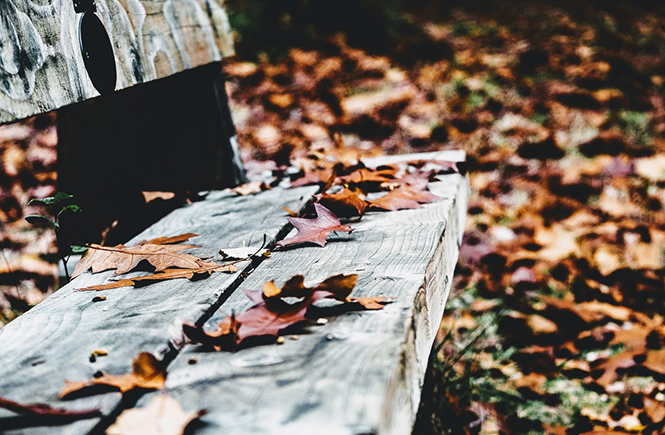 Mes envies d'octobre sur Swanee Rose Le Blog