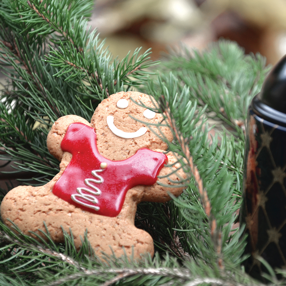 gingerman-de-noel-bio-sur-Swanee-Rose-le-blog