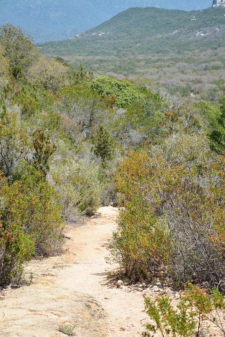 La grâce sur le chemin des vacances par Swanee Rose Le Blog