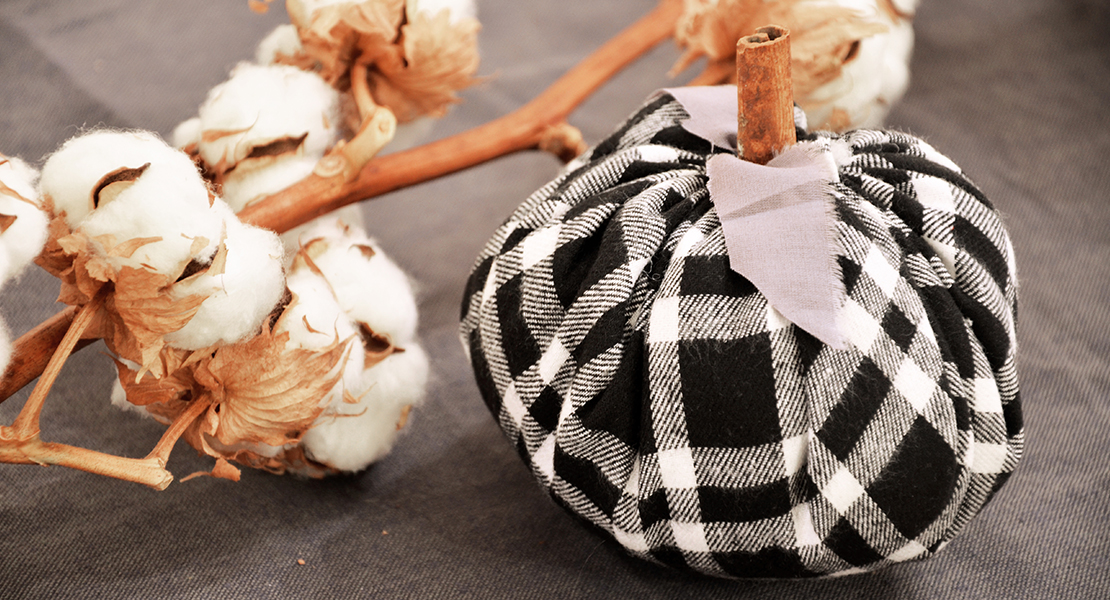 DIY-Black-and-White-Pumpkins