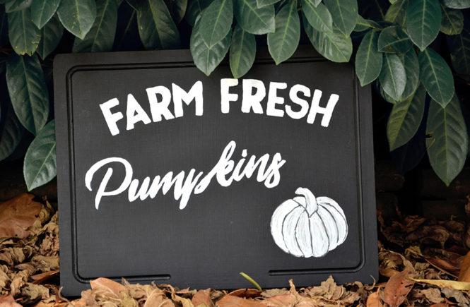 DIY Farm Fresh Pumpkins Enseigne sur Swanee Rose Le Blog