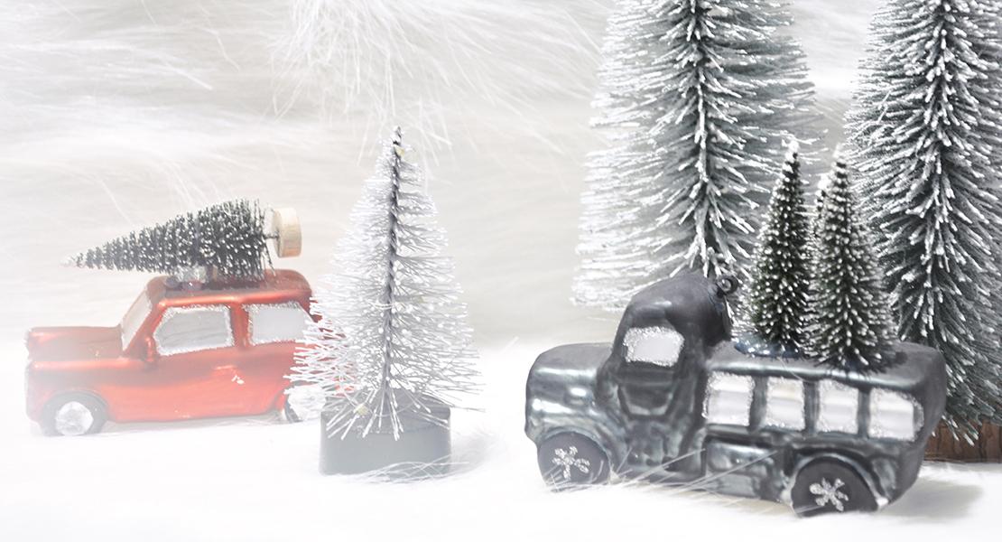 Paysage-sous-la-neige