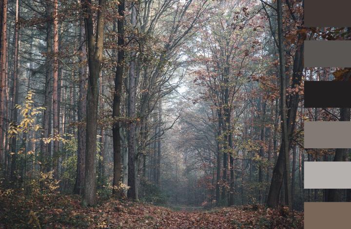 Au cœur de l'automne par Swanee Rose Le Blog