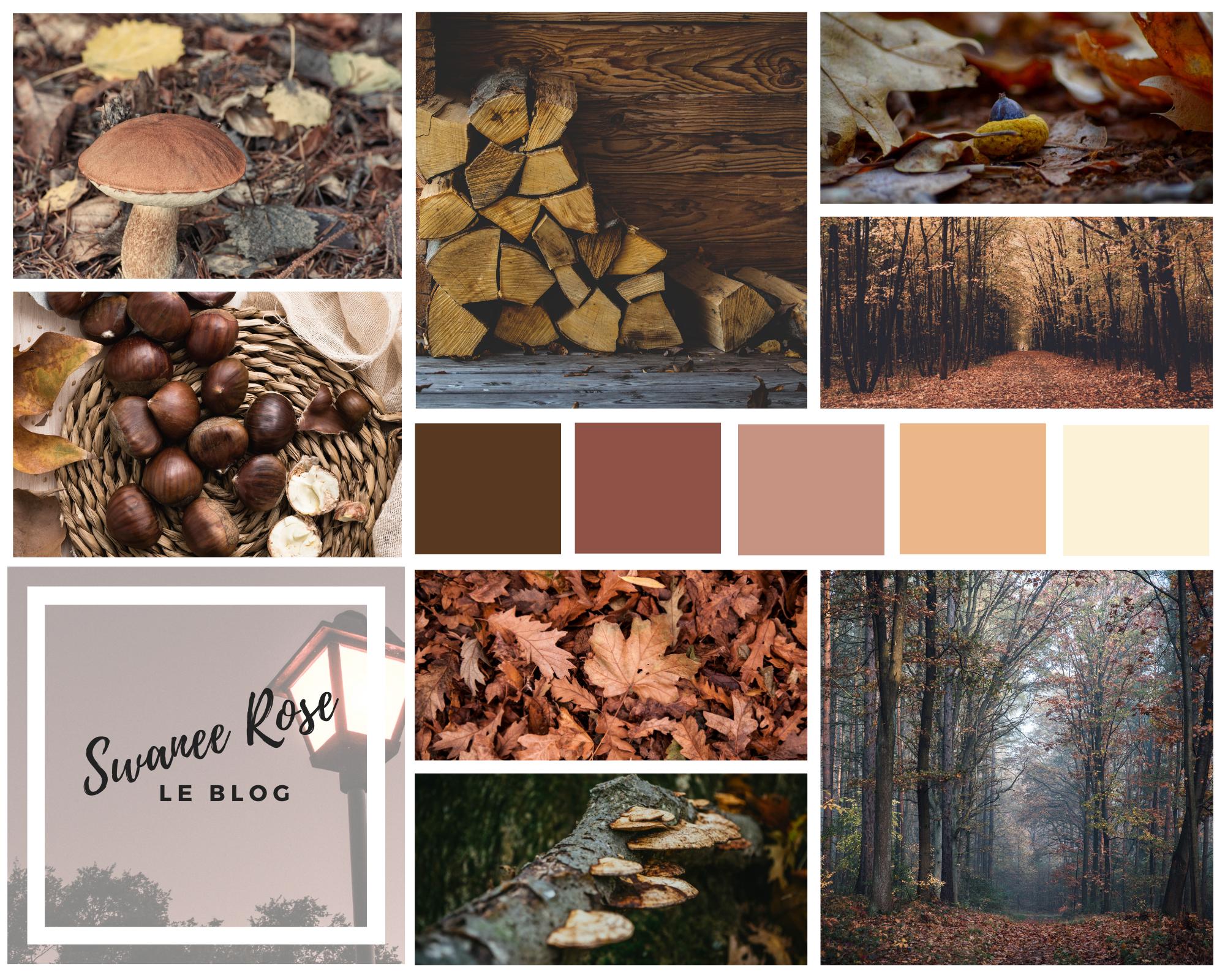 Novembre, le cœur de l'automne