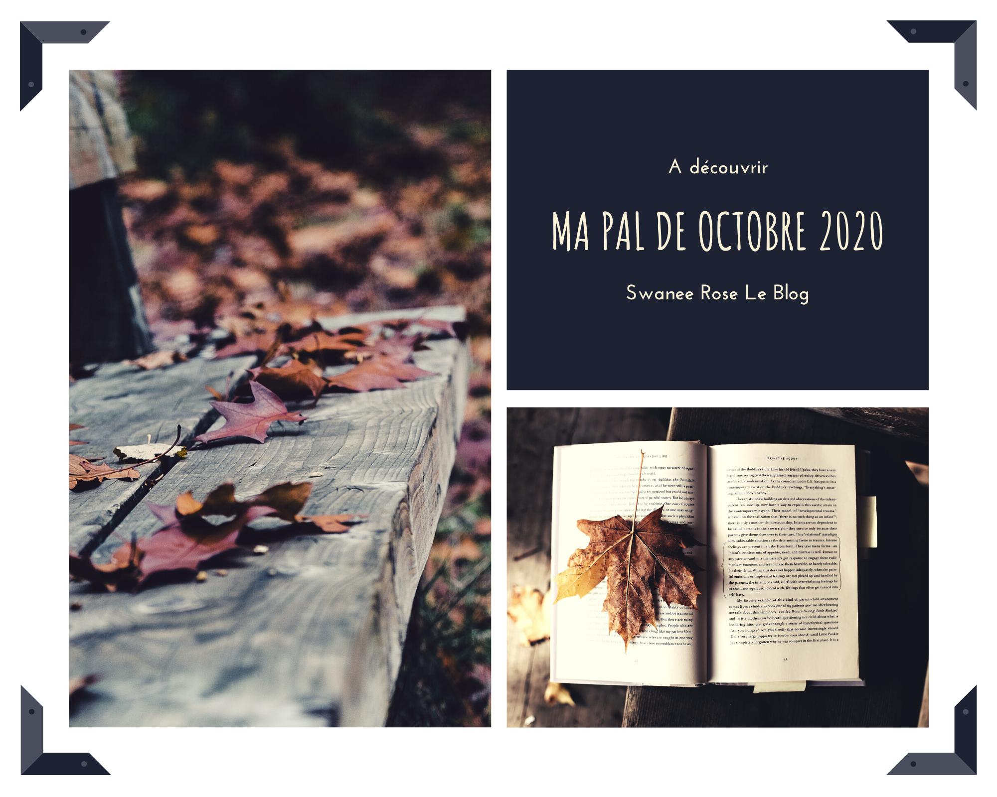 Ma PAL d'octobre 2020 sur Swanee Rose Le Blog